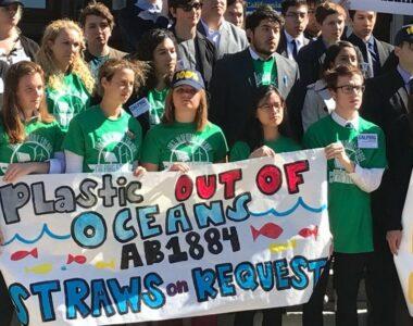 Plastic-Free Seas