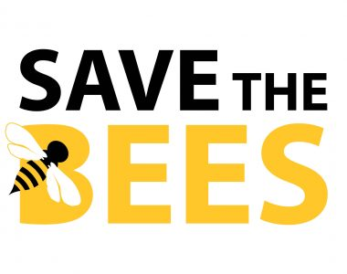 UC Irvine Becomes a Certified Bee Campus USA Affiliate